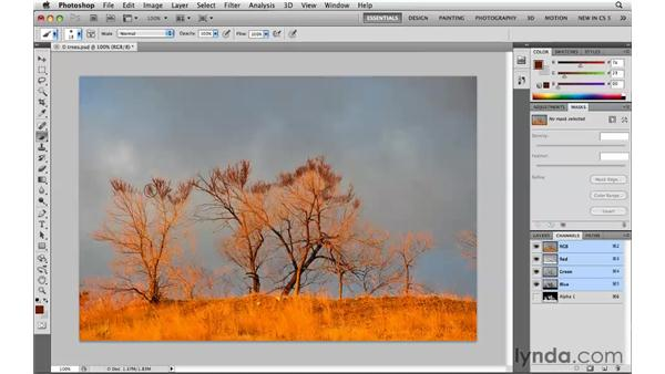 Hiding selection boundaries: Photoshop CS5: Selections in Depth