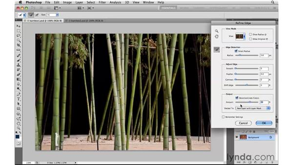 Expanding selections: Photoshop CS5: Selections in Depth