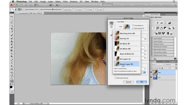 Selecting hair, pt. 1: Photoshop CS5: Selections in Depth