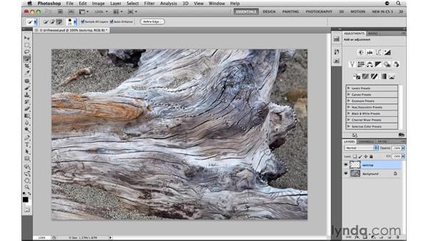 Selecting painlessly with the Quick Selection tool: Photoshop CS5: Selections in Depth