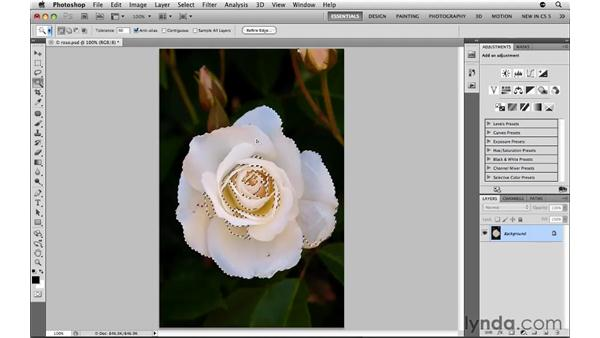 Making the Magic Wand tool work for you: Photoshop CS5: Selections in Depth