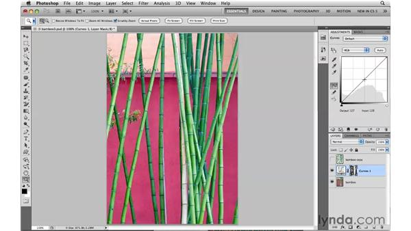 Selecting layer transparency: Photoshop CS5: Selections in Depth