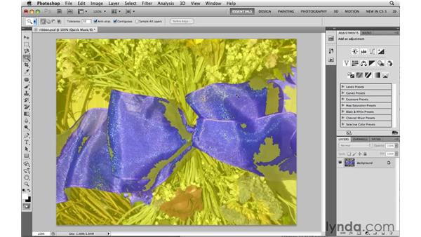 Cleaning up selections in Quick Mask: Photoshop CS5: Selections in Depth