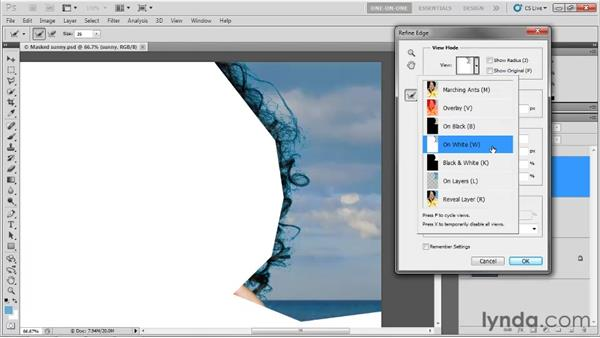 Accessing the various Refine Edge options: Photoshop CS5 One-on-One: Advanced