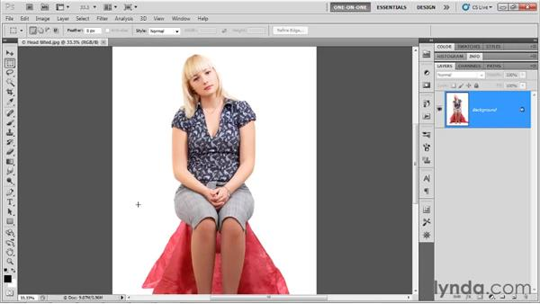Introducing the Liquify command: Photoshop CS5 One-on-One: Advanced