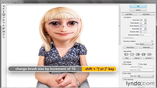 Push, Mirror, and Turbulence: Photoshop CS5 One-on-One: Advanced