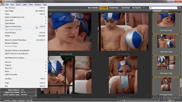 Introducing Camera Raw: Photoshop CS5 One-on-One: Advanced