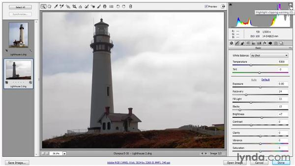 Adjusting Brightness and Contrast: Photoshop CS5 One-on-One: Advanced