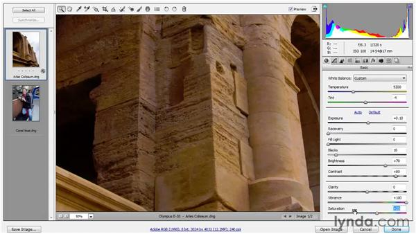 Vibrance, Saturation, and Clarity: Photoshop CS5 One-on-One: Advanced