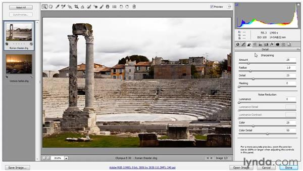 Correcting a low-noise photograph: Photoshop CS5 One-on-One: Advanced