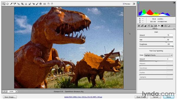 Adding grain and vignetting effects: Photoshop CS5 One-on-One: Advanced