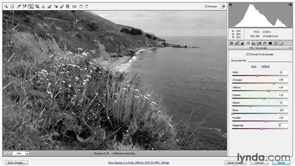 Mixing a subjective black-and-white image: Photoshop CS5 One-on-One: Advanced