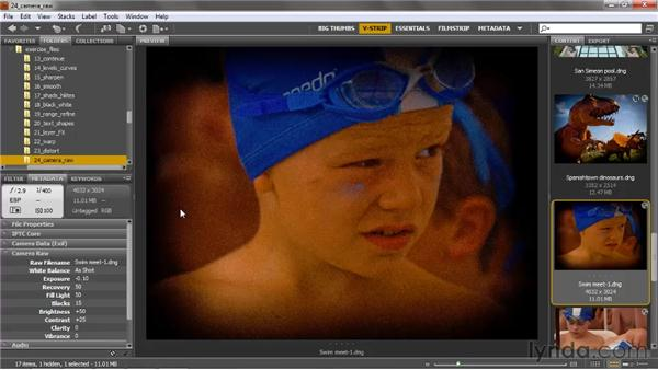Camera Raw wrap-up: Photoshop CS5 One-on-One: Advanced