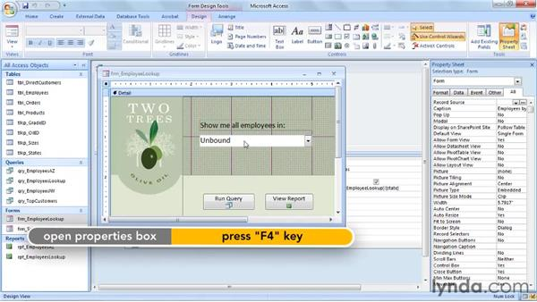 Obtaining parameters from other Access objects: Access 2007: Queries in Depth