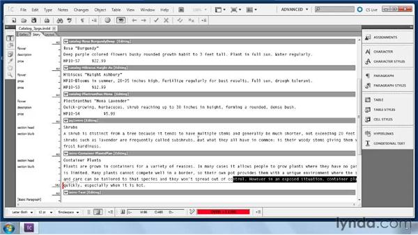 Editing workflow stories in InCopy: Collaborative Workflows with InDesign and InCopy