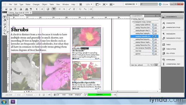 Checking stories in and out: Collaborative Workflows with InDesign and InCopy