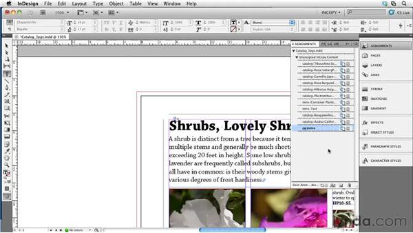 Completing a project in InDesign: Collaborative Workflows with InDesign and InCopy