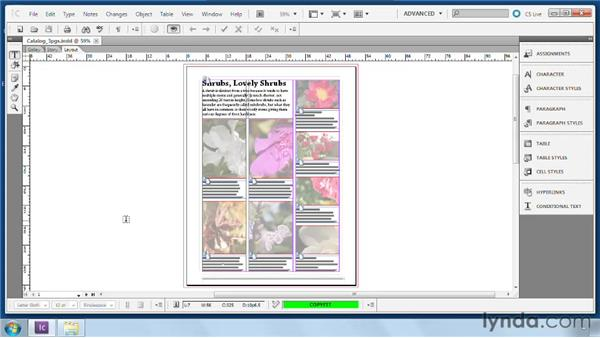 Three main views of a file: Collaborative Workflows with InDesign and InCopy