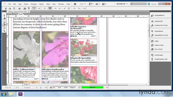 Using the Eyedropper tool to copy/paste formatting: Collaborative Workflows with InDesign and InCopy
