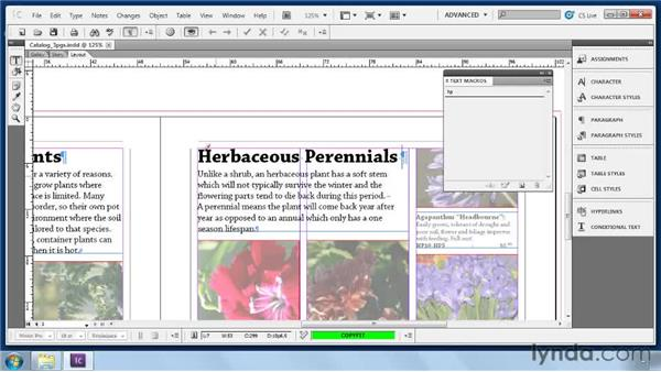Building text macros: Collaborative Workflows with InDesign and InCopy