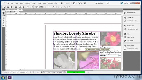 Setting up and using Track Changes: Collaborative Workflows with InDesign and InCopy