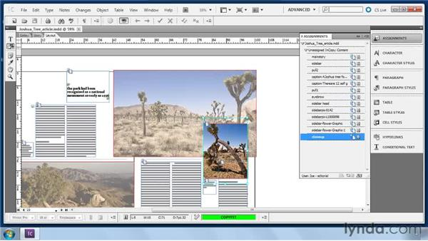 Using the Position tool: Collaborative Workflows with InDesign and InCopy