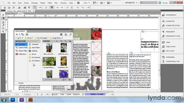 Using Mini Bridge and Bridge: Collaborative Workflows with InDesign and InCopy