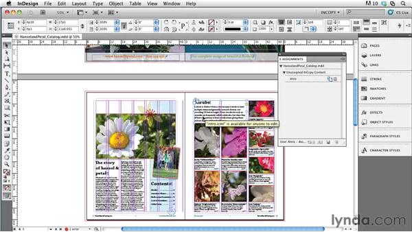 Exporting stories from the layout: Collaborative Workflows with InDesign and InCopy