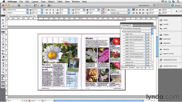 Working with the Assignments panel in InDesign: Collaborative Workflows with InDesign and InCopy