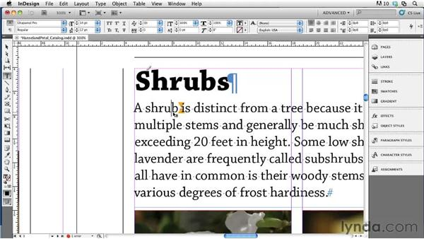 Using inline notes: Collaborative Workflows with InDesign and InCopy