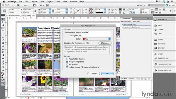 Creating assignments in InDesign: Collaborative Workflows with InDesign and InCopy