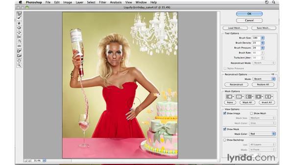 Modifying shape: Photoshop CS5: Fashion Retouching Projects
