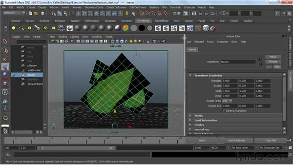 Using texture maps for color and other shader channels: Creating Textures and Shaders in Maya