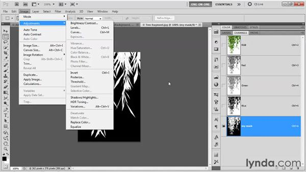 Masking and placing an image: Photoshop CS5 One-on-One: Mastery