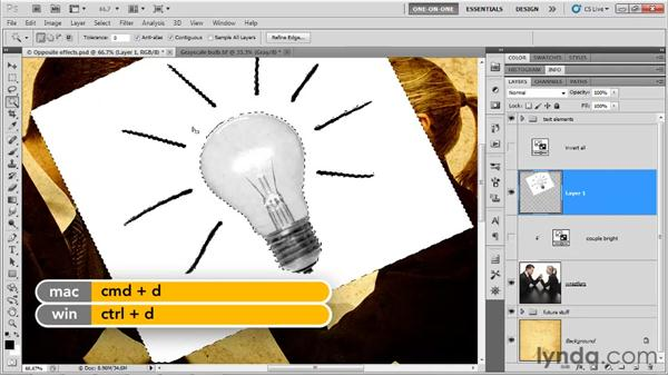 Dropping out a white background: Photoshop CS5 One-on-One: Mastery