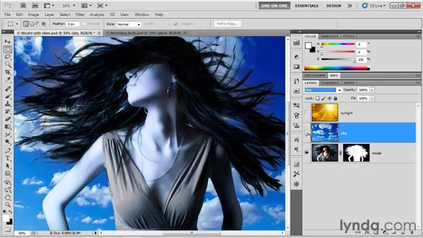 Hue, Saturation, Color, and Luminosity: Photoshop CS5 One-on-One: Mastery