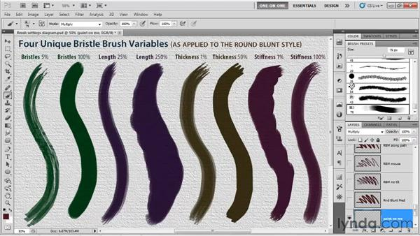 Bristles, Length, Thickness, and Stiffness: Photoshop CS5 One-on-One: Mastery