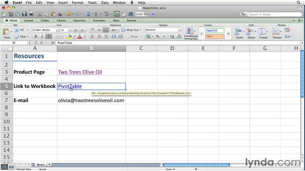 Using hyperlinks   : Excel for Mac 2011 Essential Training