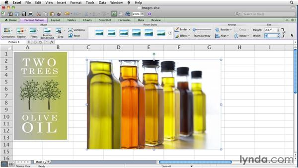 Adding and adjusting images   : Excel for Mac 2011 Essential Training