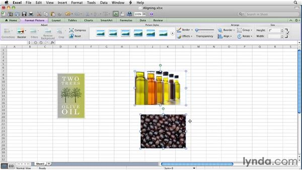 Aligning and layering objects   : Excel for Mac 2011 Essential Training