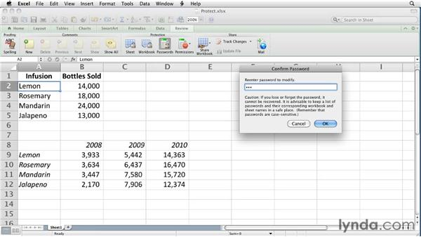 Protecting a workbook   : Excel for Mac 2011 Essential Training
