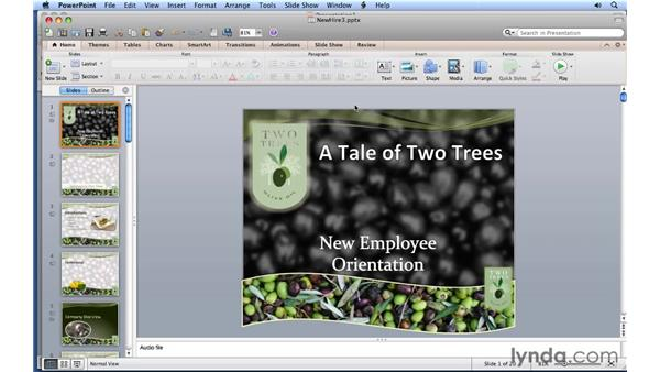 Navigating presentations: PowerPoint for Mac 2011 Essential Training