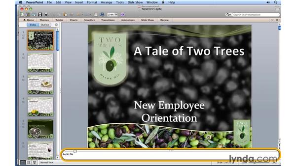 Customizing the UI layout: PowerPoint for Mac 2011 Essential Training