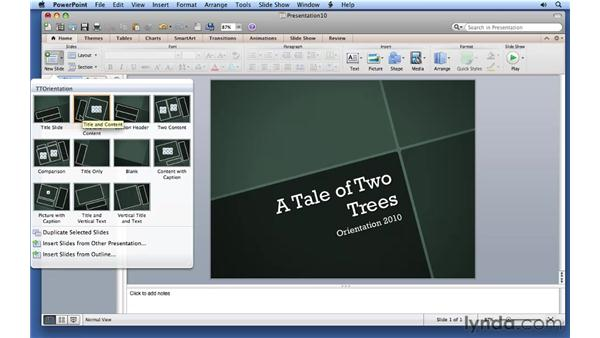 Adding text with text slides and boxes: PowerPoint for Mac 2011 Essential Training