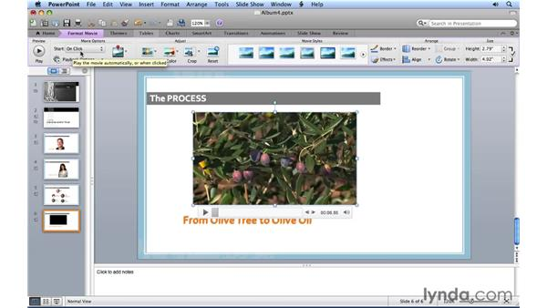 Adding video to a slide: PowerPoint for Mac 2011 Essential Training