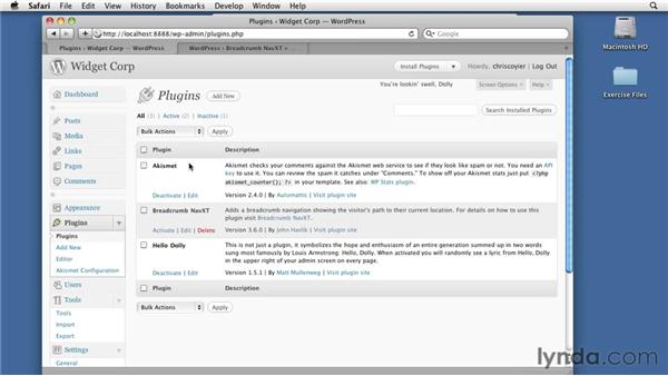 Introducing plug-ins: WordPress 3: Creating and Editing Custom Themes