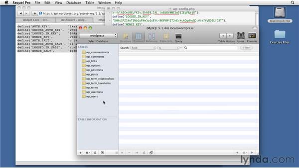 Setting up security: WordPress 3: Creating and Editing Custom Themes