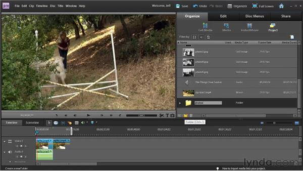 Managing media in the Project workspace: Premiere Elements 9 Essential Training