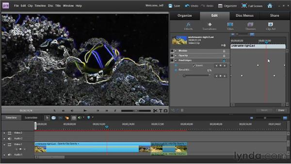 Understanding animation : Premiere Elements 9 Essential Training
