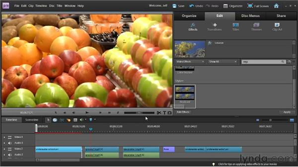 Animating video effects: Premiere Elements 9 Essential Training